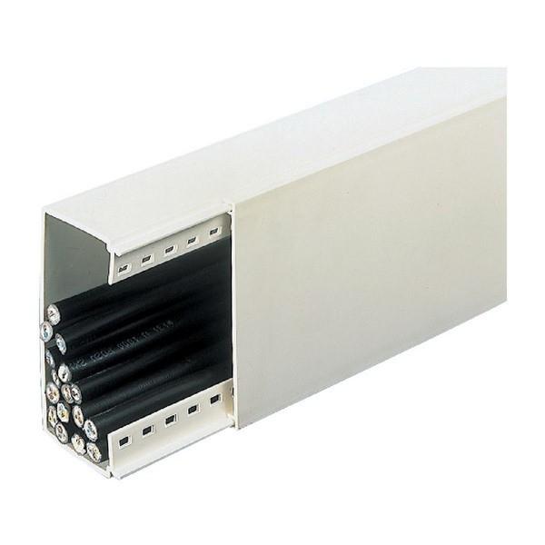 Alpi baguette de distribution moulure blanc 60x40mm x 2m for 2m distribution